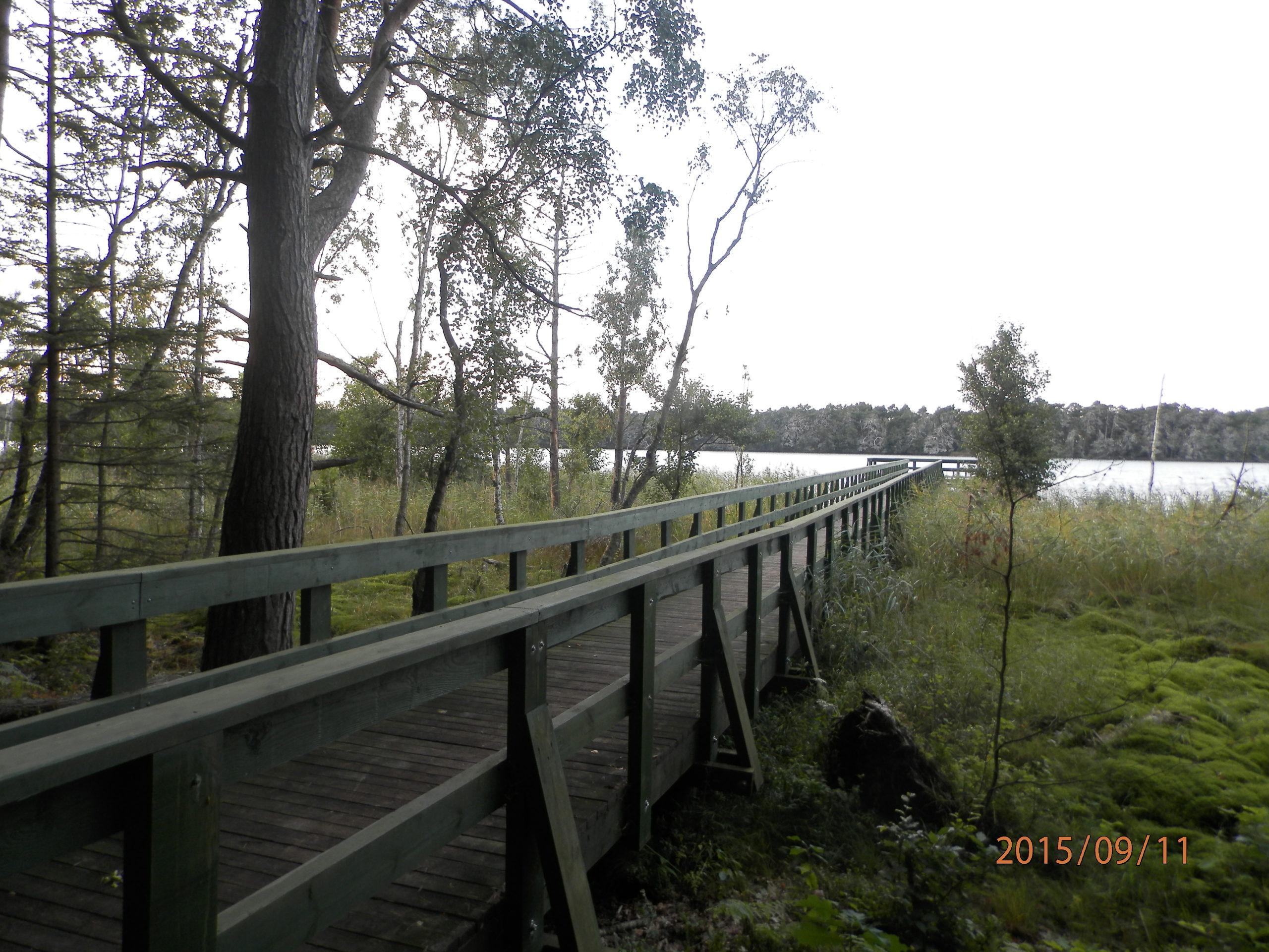 slowinski-park-narodowy-41