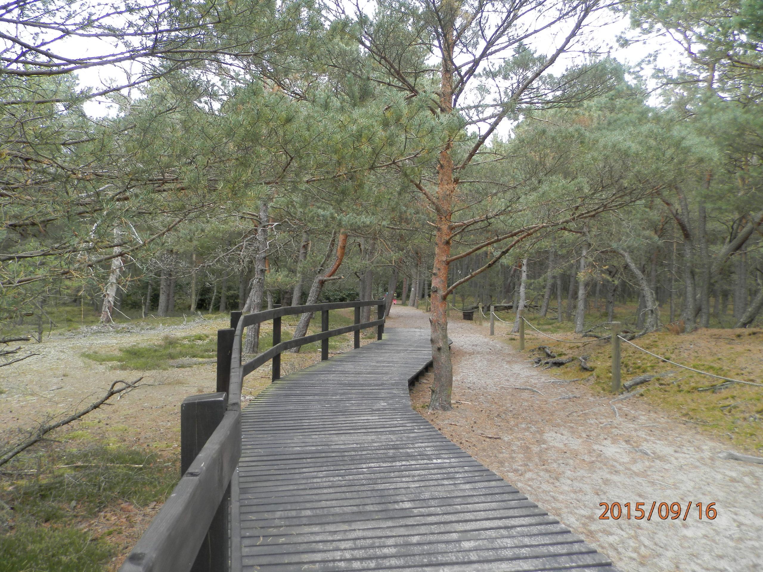 slowinski-park-narodowy-37