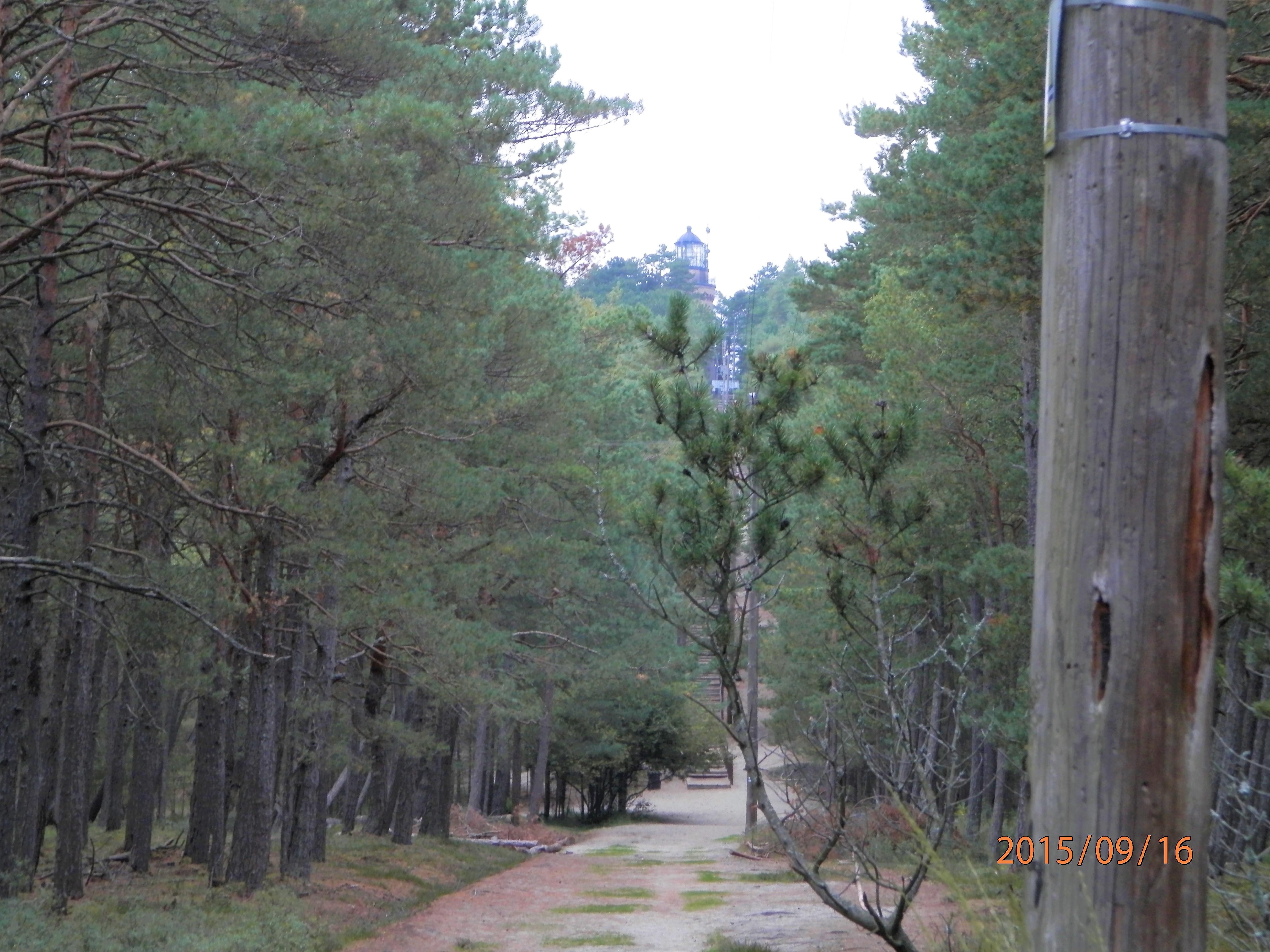 slowinski-park-narodowy-20